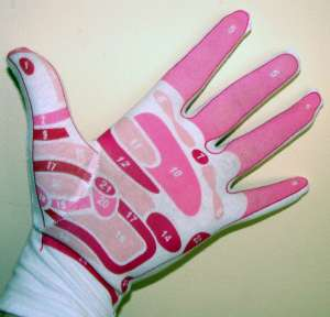 Glove showing reflex areas in the hand